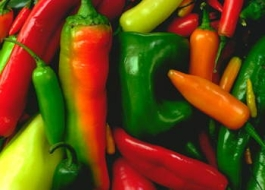 ruzne-barvy-papriky